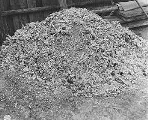 <p>One of many piles of ashes and bones found by US soldiers at the Buchenwald concentration camp. Germany, April 14, 1945.</p>