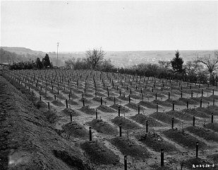 "<p>Cemetery at <a href=""/narrative/8116/en"">Hadamar</a> where victims of <a href=""/narrative/4032/en"">euthanasia</a> killing at Hadamar were buried. This photograph was taken toward the end of the war. Hadamar, Germany, April 1945.</p>"