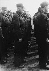 <p>Roll call of the camp Jewish police. Westerbork transit camp, the Netherlands, 1942 or 1943.</p>