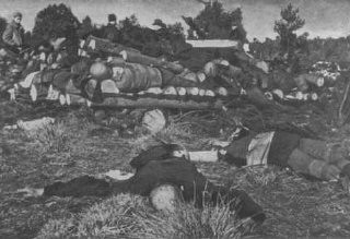 "<p>Corpses of inmates from the Klooga camp stacked for burning. Soviet troops discovered the bodies when they liberated the camp. <a href=""/narrative/5858/en"">Estonia</a>, September 1944.</p>"