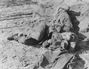 """<p>Polish and Russian forced laborers shot by the SS after they had collapsed from exhaustion during a <a href=""""/narrative/2931/en"""">death march</a>. Wisenfeld, Germany, April 26, 1945.</p>"""