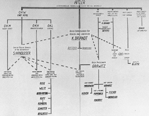 <p>A diagram showing the medical chain of command in the Third Reich, drawn up as evidence for the Doctors Trial. Nuremberg, Germany, December 1946.</p>