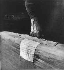 "<p>Sara Neumann carries her luggage labled with an address in New York as she leaves the <a href=""/narrative/11676/en"">Deggendorf</a> displaced persons camp. Deggendorf, Germany, 1945–47.</p>"
