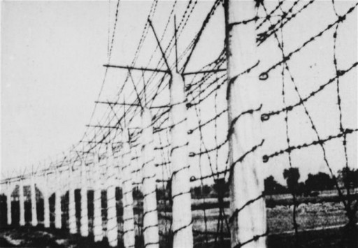 The barbed wire fence that enclosed the Breendonck concentration camp.