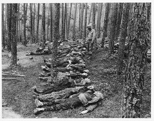 "<p>An American soldier looks at the corpses of Polish, Russian, and Hungarian Jews found in the woods near Neunburg vorm Wald. The victims were prisoners from Flossenbürg who were shot near Neunburg while on a <a href=""/narrative/2931/en"">death march</a>. Germany, April 29, 1945.</p>"