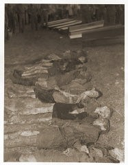"""<p>The bodies of Jewish women exhumed from a mass grave near Volary. The victims died at the end of a <a href=""""/narrative/2931/en"""">death march</a> from Helmbrechts, a subcamp of <a href=""""/narrative/6783/en"""">Flossenbürg</a>. Germans were forced to exhume them in order to give the victims proper burial.Volary, Czechoslovakia, May 11, 1945.</p>"""