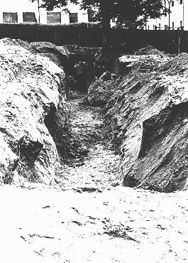"""<p>A mass grave dug by Jewish forced laborers for the bodies of individuals murdered by the NKVD in Lvov prisons. The NKVD (Soviet secret police) murdered thousands of Ukrainian nationalists, as well as some Jews and Poles, before retreating from the <a href=""""/narrative/2972/en"""">Nazi invasion</a>. The Germans and their Ukrainian collaborators then used the massacre as a pretext for anti-Jewish <a href=""""/narrative/3487/en"""">pogroms</a>, claiming that the Jews had helped the secret police. Lvov, Poland, July 3, 1941.</p>"""