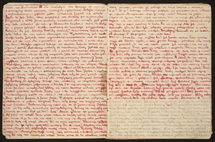 Page from Stanislava Roztropowicz's diary