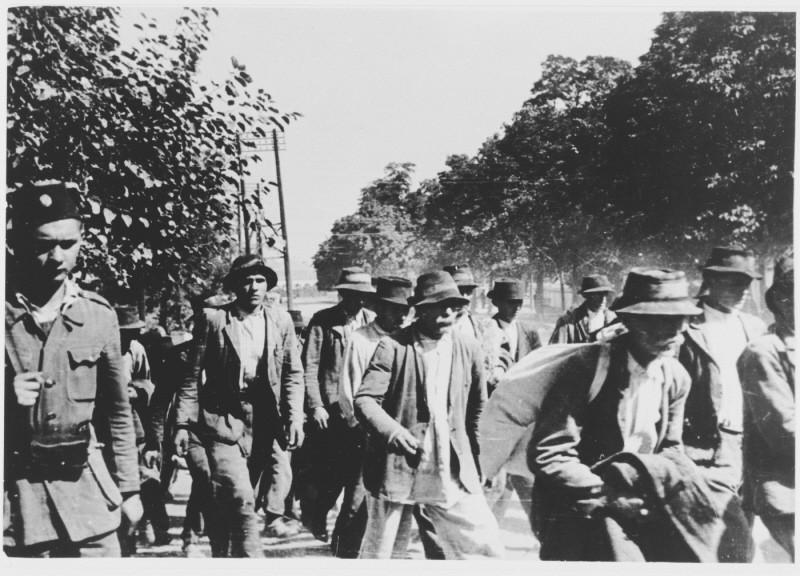 Deportation to the Jasenovac camp. Yugoslavia, probably 1942. [LCID: 85799]