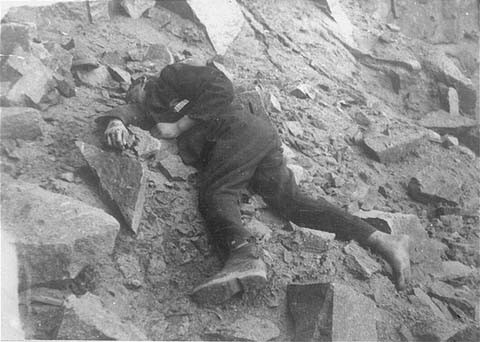 A Soviet inmate lies dead in the Mauthausen concentration camp quarry. [LCID: 19481]