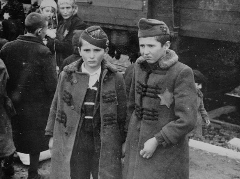 Yisrael and Zelig Jacob, the younger brothers of Lili Jacob, from the Auschwitz Album. [LCID: 77218]