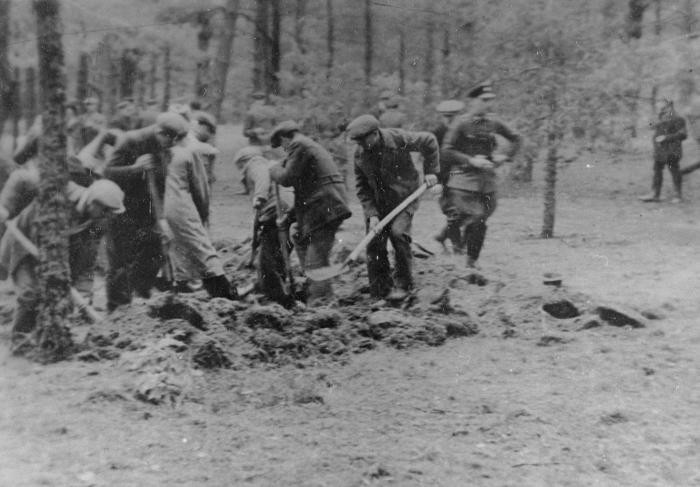 """<div class=""""content-description""""> <p>Polish civilians under SS and <em>Selbstschutz</em> (ethnic German self-defense organization) guard are forced to dig a mass grave prior to their execution in the forest near Tuchola. Tuchola Forest, Bydgoszcz, Poland, October 27, 1939.</p> </div>"""