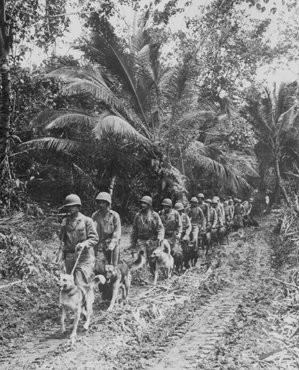 <p>US Marines head for the front lines in the jungles of Bougainville, one of the Solomon Islands in the Pacific Ocean. 1943.</p>