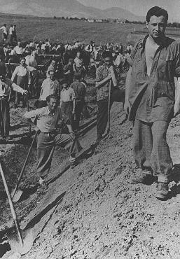 Inmates of a forced-labor camp for Jews in Hungarian-occupied Transylvania.