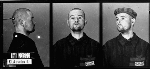 Identification pictures of a homosexual prisoner who arrived in Auschwitz on November 27, 1941, and was transferred to Mauthausen ... [LCID: 02531]