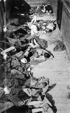 Corpses lie in one of the open railcars of the Dachau death train. [LCID: 06118]