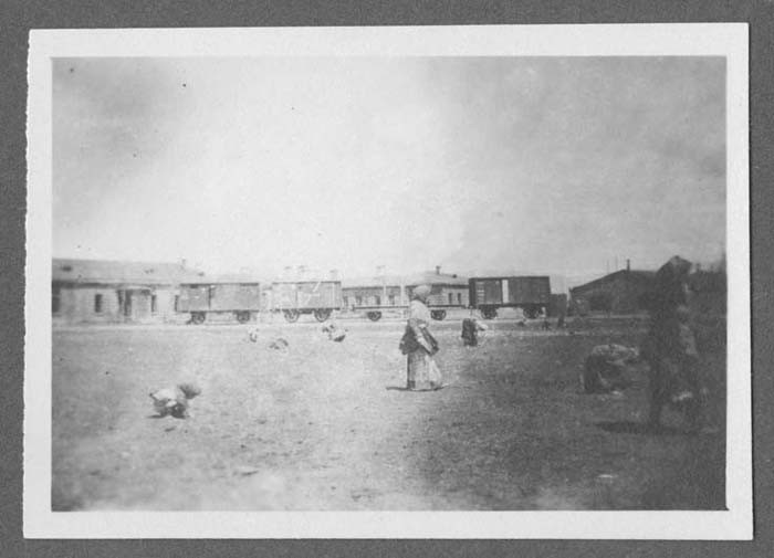 <p>Refugees foraging at Alexandropol, Russian Armenia. Photograph taken by John Elder. In 1917, Elder, a divinity student from Pennsylvania, joined the American Committee for Armenian and Syrian Relief team that was aiding refugees. For two years, Elder did volunteer work with Armenian orphans. During that time, he photographed refugees and conditions at camps.</p>