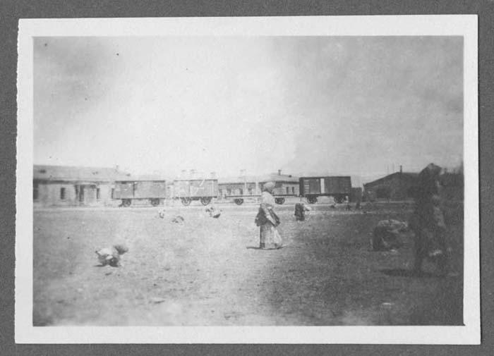 <p>لاجؤون يستخدمون علفًا في ألكسندروپول، أرمينيا الروسية. صورة ملتقطة بواسطة جون إيلدر في عام 1917، إيلدر طالب لاهوت من ولاية بنسلفانيا، انضم إلى اللجنة الأمريكية لفريق الإغاثة الأرمني والسوري الذي ساعد اللاجئين. لمدة سنتين، أدى إيلدر أعمالاً تطوعية مع الأيتام الأرمن. وخلال ذلك الوقت، قام بتصوير اللاجئين والظروف في المخيمات.</p>