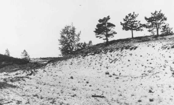 "<p>Site where members of <a href=""/narrative/2290"">Einsatzgruppe</a> A and Estonian <a href=""/narrative/6437"">collaborators</a> carried out a mass execution of Jews in September 1941. Kalevi-Liiva, <a href=""/narrative/5858"">Estonia</a>, after September 1944.</p>"