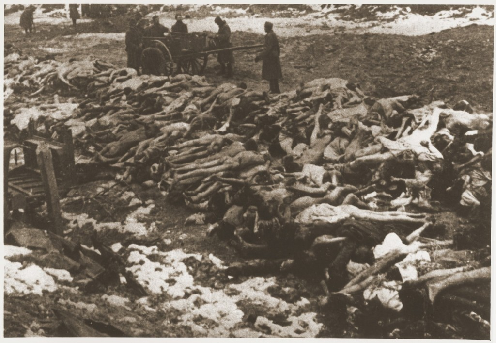 Bodies of Soviet prisoners of war. Place and date uncertain. [LCID: 79306]