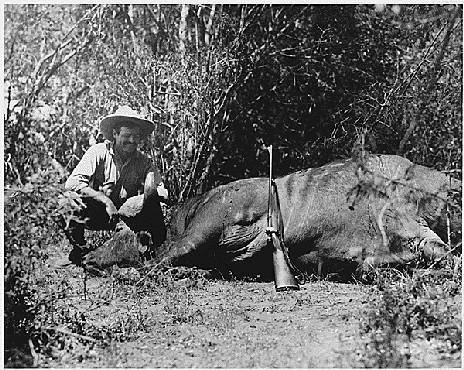 <p>ارنست همینگوی در تور شکار حیوانات وحشی، حدود سال 1933.</p>