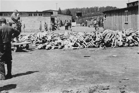 A pile of corpses at the Russian Camp (Hospital Camp) section of the Mauthausen concentration camp after liberation. [LCID: 04766]