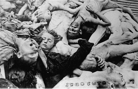 A pile of corpses in the newly liberated Dachau concentration camp. [LCID: 85117]