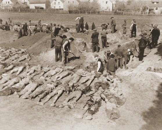 German civilians from Schwarzenfeld dig graves for the reburial of 140 Hungarian, Russian, and Polish Jews exhumed from a mass grave ... [LCID: 78850]