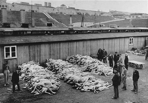 Piles of corpses, soon after the liberation of the Mauthausen camp. [LCID: 74466]