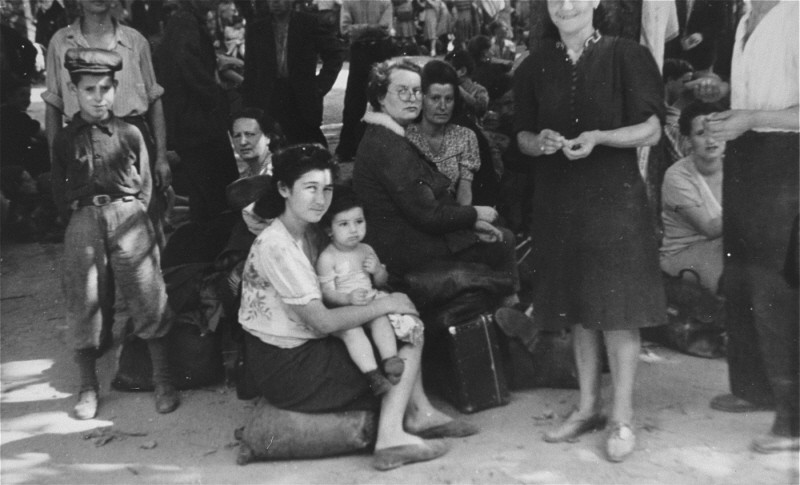 <p>Polish Jewish refugees, part of the Brihah (the postwar mass flight of Jews from eastern Europe), arrive in Vienna. Austria, summer 1946.</p>