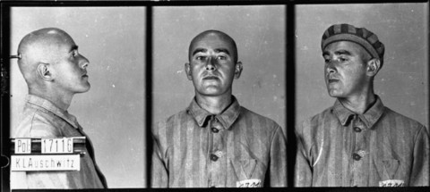 Identification pictures of a prisoner, accused of homosexuality, who arrived at the Auschwitz concentration camp on June 6, 1941. [LCID: 02534]