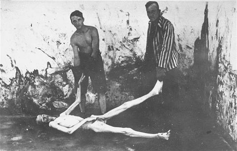 Survivors of the Dachau concentration camp prepare to move a corpse during a demonstration of the cremation process at the camp. [LCID: 15029a]