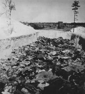 After camp liberation, one of the mass graves at the Bergen-Belsen camp. [LCID: 78261]