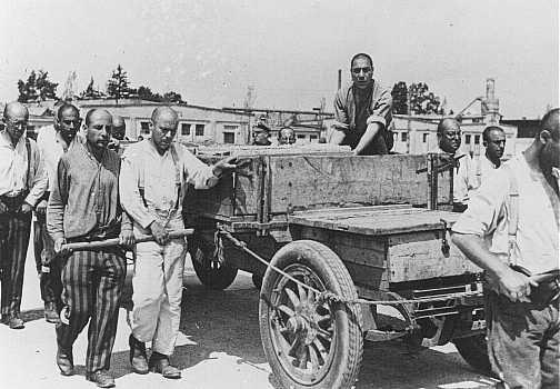 <p>سجناء أثناء العمل الشاق. تم التقاط هذه الصورة أثناء إحدى عمليات التفتيش الرسمي التي قام بها رجال القوات الخاصة. محتشد اعتقال داخاو، ألمانيا، 28 حزيران/يونيو، عام 1938.</p>