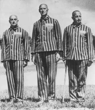 Austrian prisoners, marked with triangles and identifying patches, in the Dachau concentration camp. [LCID: 78552]