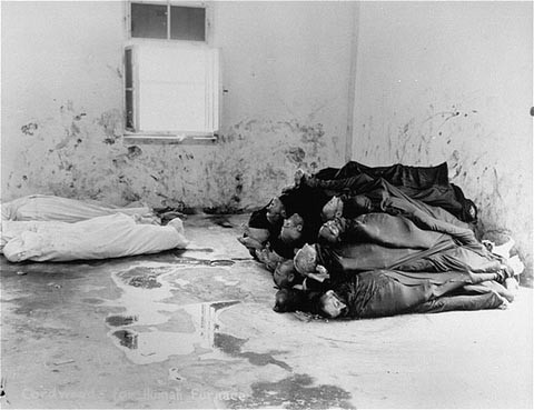 """<p>Corpses are piled in the crematorium mortuary in the newly liberated Dachau concentration camp. Dachau, Germany, May 1945.</p> <p>This image is among the<a href=""""/narrative/8334/en"""">commonly reproduced and distributed</a>, and often extremely graphic, images of liberation.These photographs provided powerful documentation of the crimes of the Nazi era.</p>"""