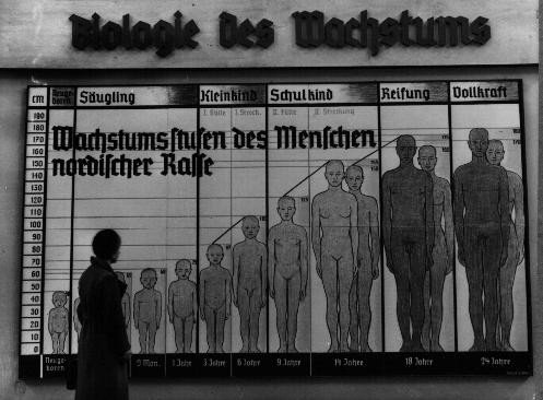 The Nazis used public displays to spread their ideas of race. [LCID: 45105]