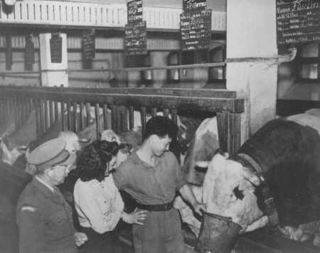 "<p>An agricultural training farm to prepare Jewish refugees for life in Palestine, sponsored by the <a href=""/narrative/5002"">Joint Distribution Committee</a>. Fuerth, Germany, June 13, 1946.</p>"