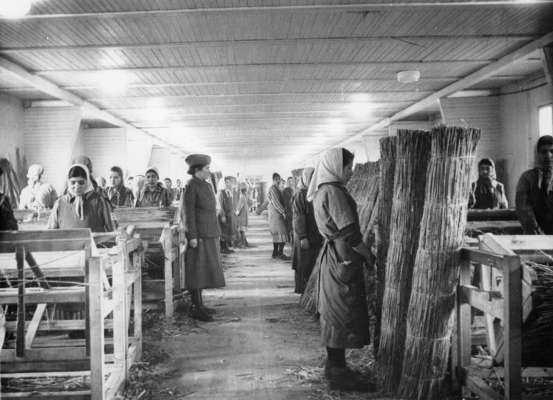 Romani (Gypsy) inmates at forced labor in Ravensbrueck concentration camp. [LCID: 6036]