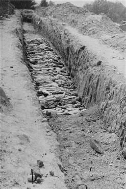 A mass grave at the Mauthausen concentration camp. [LCID: 04767]