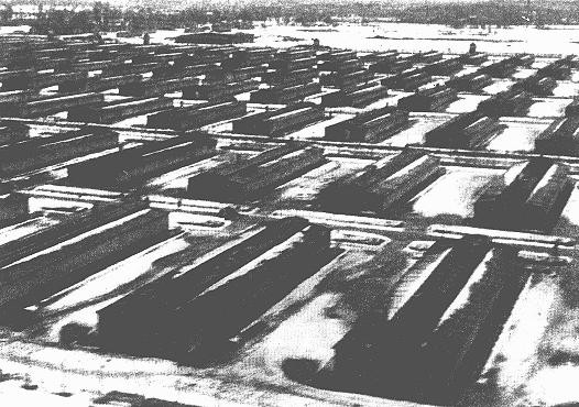 Barracks in the Auschwitz-Birkenau camp. This photograph was taken after the liberation of the camp. [LCID: 04412]