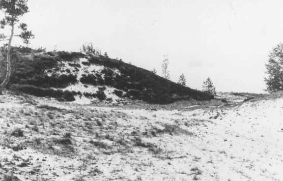Site where members of Einsatzgruppe A (mobile killing unit A) and Estonian collaborators carried out a mass execution of Jews in ... [LCID: 61466]