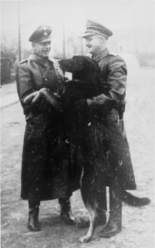 Two SS officers and a guard dog in the Janowska concentration camp. [LCID: 69984]