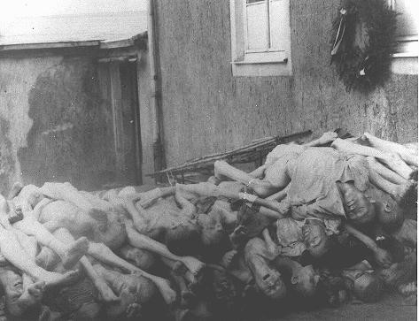 <p>Corpses stacked behind the crematorium in Buchenwald. Germany, May 1945.</p>