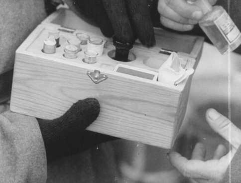Soviet soldiers inspect a box containing poison used in medical experiments. [LCID: 85092]