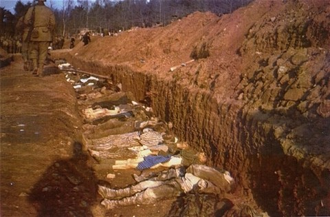 The bodies of prisoners killed in the Nordhausen concentration camp lie in a mass grave dug by German civilians under orders from ... [LCID: 83929]
