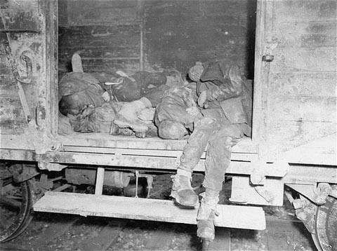 Corpses lie in one of the open railcars of the Dachau death train. [LCID: 00416]