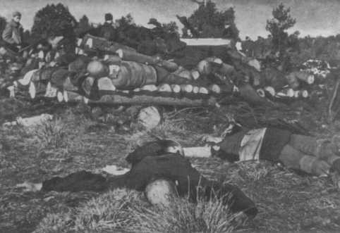 Corpses of inmates from Klooga concentration camp stacked for burning. [LCID: 50607]