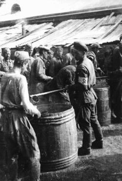 "<p><a href=""/narrative/10135"">Soviet prisoners of war</a> receiving their meager rations. More than three million Soviet prisoners of war died in German custody, mostly from malnutrition and exposure. Rovno, Poland, 1941.</p>