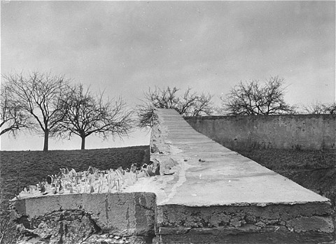 "<p>View of the wall surrounding the cemetery of the Hadamar <a href=""/narrative/4032"">euthanasia</a> killing center. Jagged pieces of glass were placed on the wall to discourage observers. This photograph was taken by an American military photographer soon after the liberation of Hadamar. Germany, April 5, 1945.</p>"